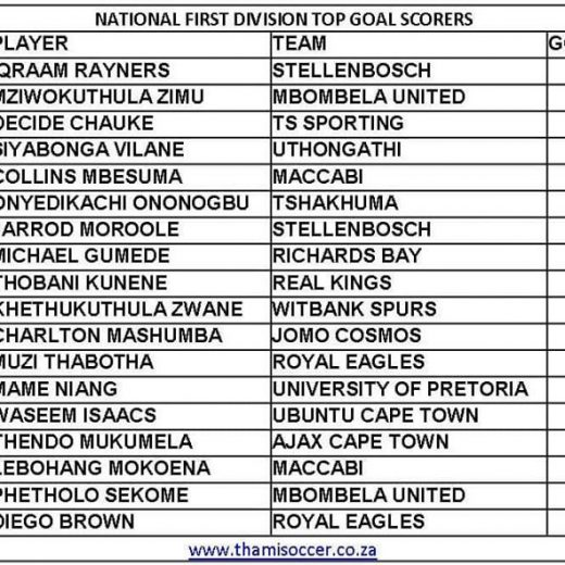 Current National First Division log and top goal scorers