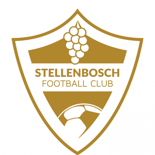 Stellenbosch Football Club updated their profile picture