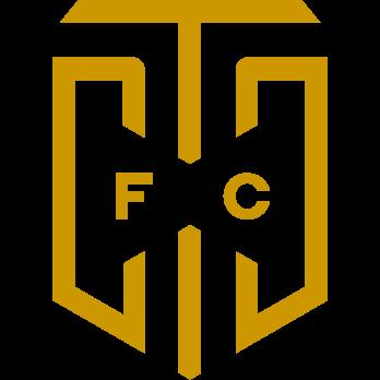 CT City FC logo